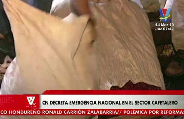 Presentan proyecto de ley para decretar emergencia nacional en el sector cafetalero
