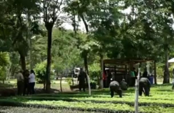 15 mil ingenieros agrónomos no tienen trabajo en Honduras