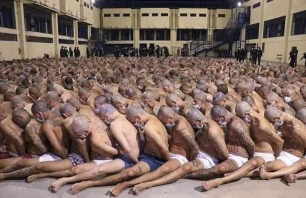 La Fuerza Letal de Nayib Bukele con las pandillas