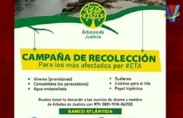 Árboles de justicia se solidariza con el pueblo hondureño