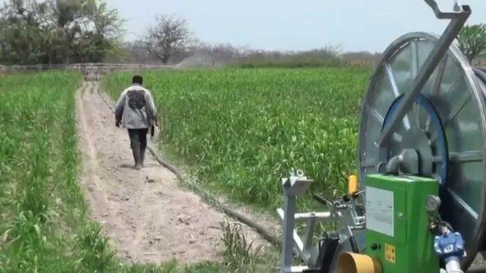 Agro en Honduras