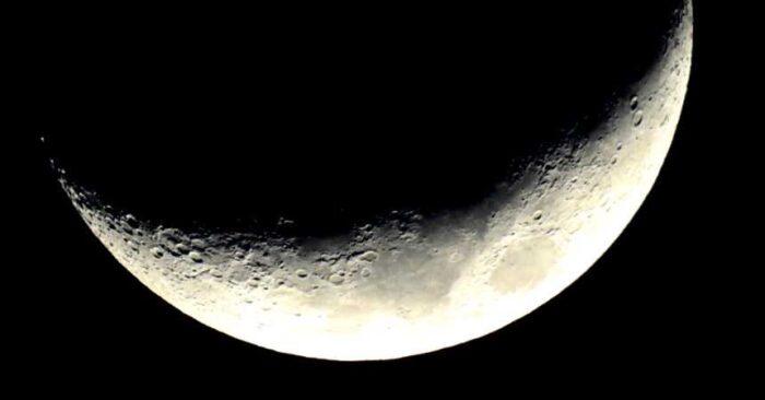 Millonario japonés sortea 8 pasajes para viajar alrededor de la Luna en la Starship de Elon Musk