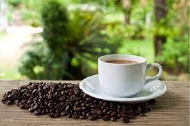 Café hondureño clave para reactivar la economía hondureña