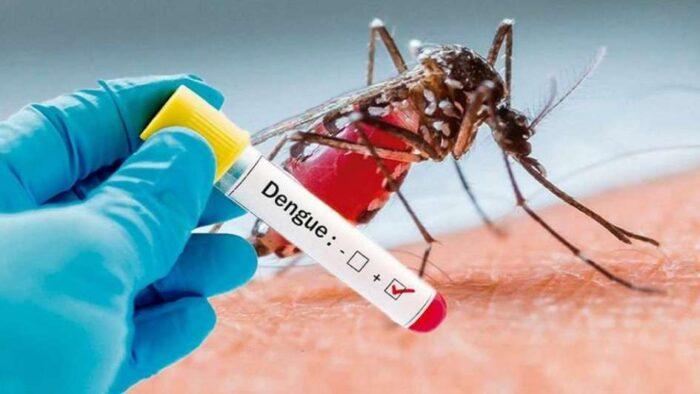 Salud intensifica medidas sanitarias para prevenir brotes del dengue
