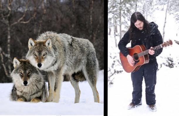 Cantaban mientras nevaba en el bosque y esto les ocurrió al encontrarse con una manada de lobos